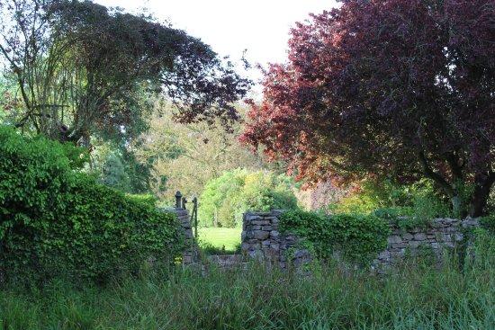 Bulleigh Barton Manor: photo2.jpg
