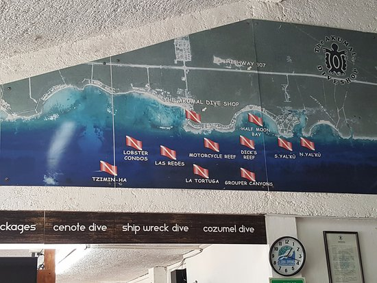 Akumal Dive Shop : Dive sites surrounding Akumal