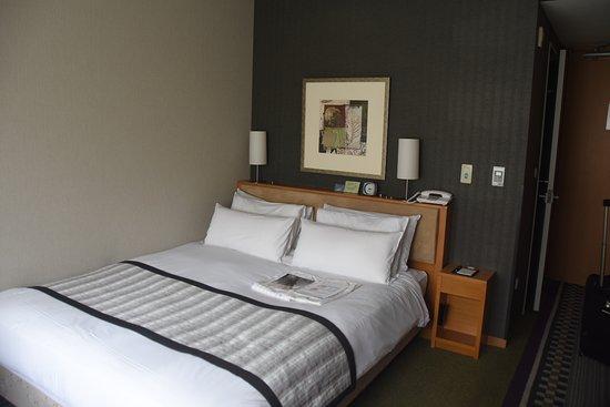 Hotel Sunroute Plaza Shinjuku: Room