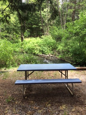 Shingletown, CA: A great picnic area along side of the creek