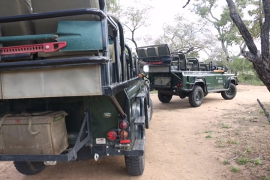 Timbavati Private Nature Reserve, Sudáfrica: Land Rovers