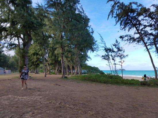 Oahu's Windward Coast Foto