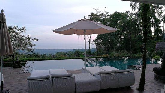 Oxygen Jungle Villas: Pool from the restaurant