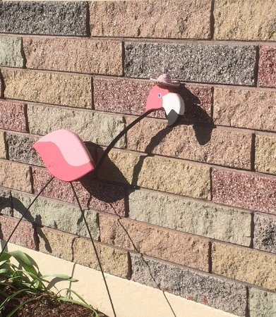 Flamingo Motel: Yes, there are flamingoes here!