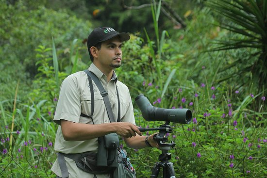 ‪Johan Chaves - Nature and birding Tours‬