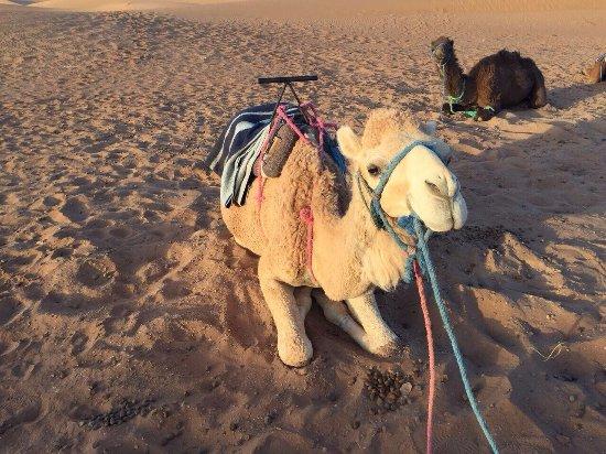 Morocco Touring