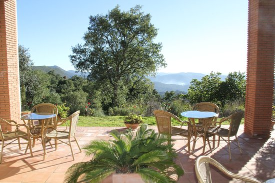 Finca La Fronda: Breakfast view