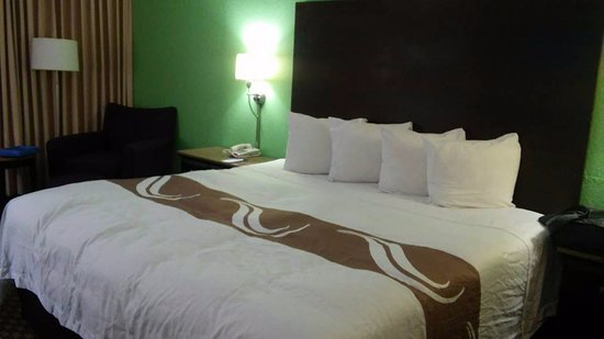 Quality Inn & Suites-Capital District Bild