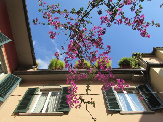 Rivoli Boutique Hotel: courtyard view