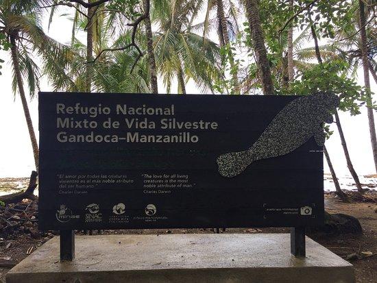Refugio Nacional Mixto de Vida Silvestre Romelia: photo0.jpg