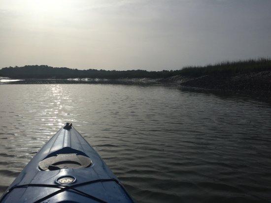 Beaufort Kayak Tours: Ecology salt marsh tour