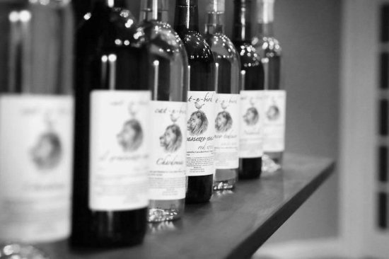 Chelsea, AL: Just a preview of the many international wines you'll find at Cat-n-Bird