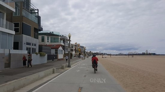 Small Group Electric Bicycle Tour of Santa Monica and Venice Beach: Pedal... Or Not! tour along Santa Monica