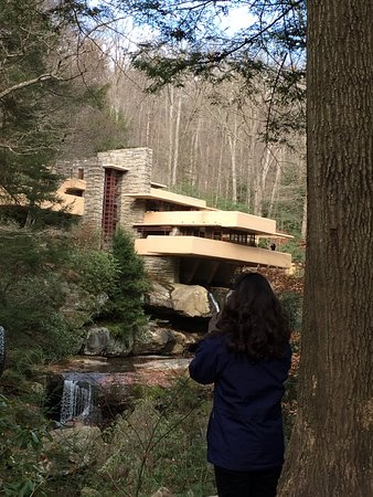 ‪‪Fallingwater‬: the famous view‬