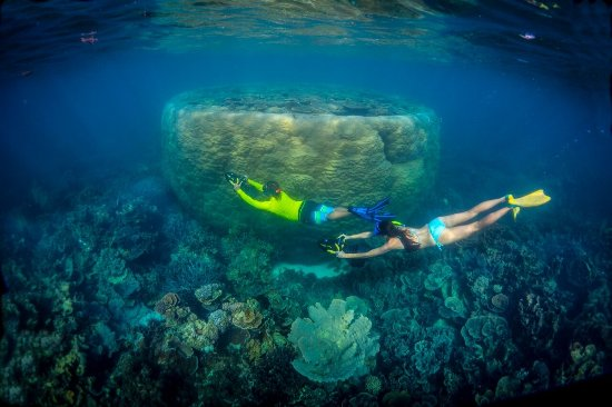 Coral Bay, Australia: Seascooter tours $60 per person includes snorkel gear and wetsuits. Tours operate daily.