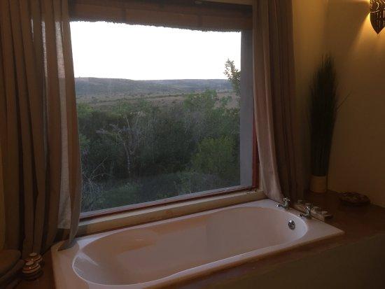 Заповедник Амакала, Южная Африка: photo8.jpg