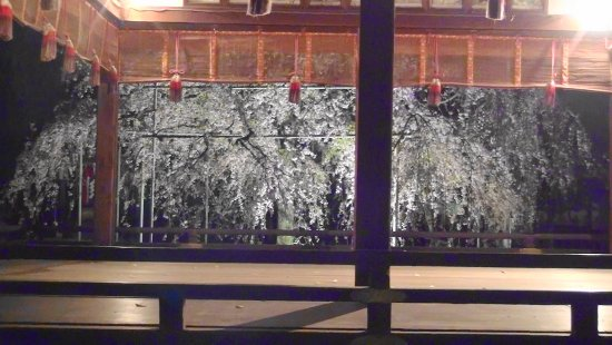 Hirano Shrine Foto