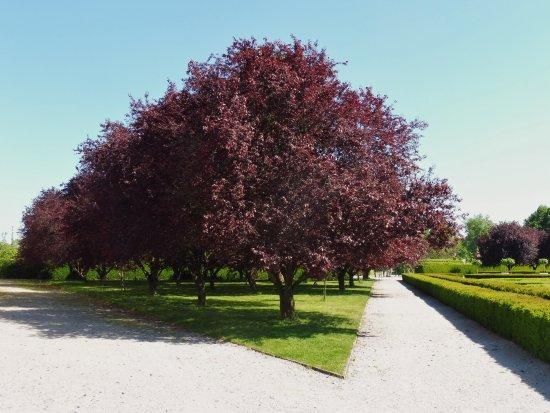 Zámek Troja: parco del castello