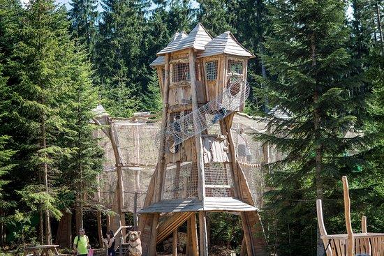 Липно-над-Влтавой, Чехия: Království lesa Lipno - dřevěné hrady propojené provazovými chodníky