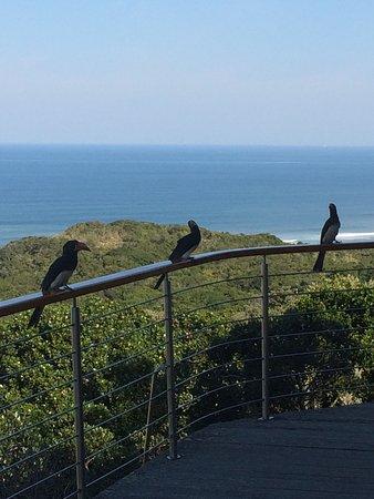 Oceana Beach and Wildlife Reserve: photo2.jpg