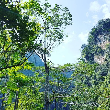 The Banjaran Hotsprings Retreat: IMG_20170517_103702_703_large.jpg