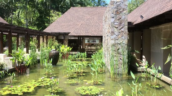 The Banjaran Hotsprings Retreat: IMG-20170519-WA0067_large.jpg