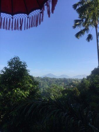 Kupu Kupu Barong Villas and Tree Spa: photo0.jpg