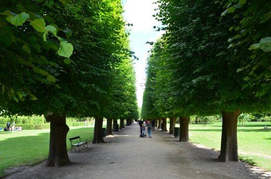 Kongens Have: Park