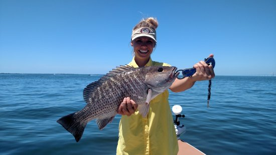 Tampa Flats and Bay Fishing Charters