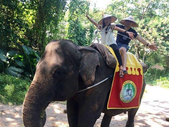 Bali Safari & Marine Park: Fantastic experience!