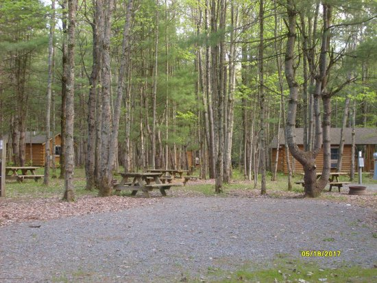 Milford, Nowy Jork: Hartwick Highlands Campground - the wooded cabins