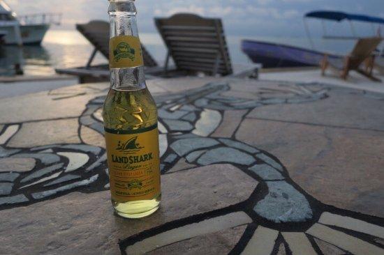 Iguana Reef Inn: photo6.jpg