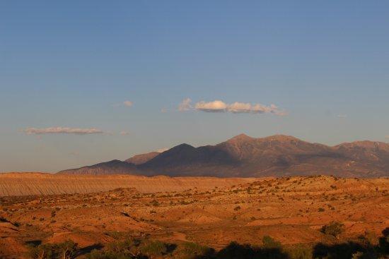 Sunlit Oasis Photo