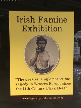A MUST See In Dublin!