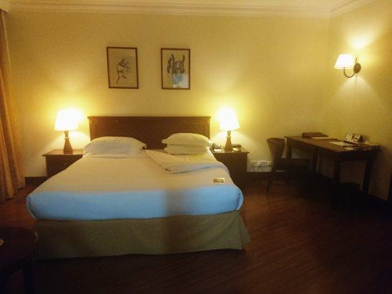 Kibo Palace Hotel照片
