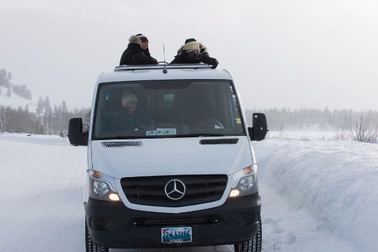 Wild Things of Wyoming: Our customized Mercedes safari vehicles with roof hatches are the best in North America.