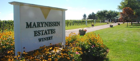 Marynissen Estate Winery