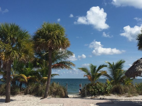 Beach Haus Key Biscayne Club Half A Block Away