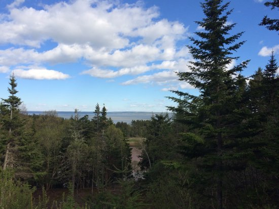 New Horton, Kanada: What a view from the main porch