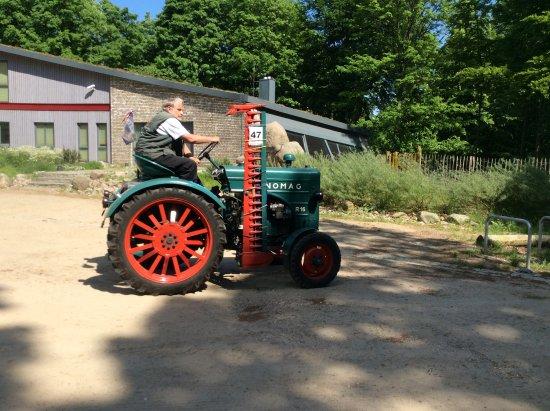 Schönewalde, Deutschland: An old tractor that took part in a rally at the cafe.
