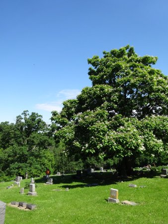 Hannibal, MO: Mt Olivet Cemetery And Memorial Park
