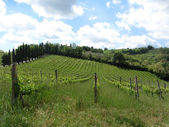 Wine Tours with Italy and Wine: Cappella Sant 'Andrea