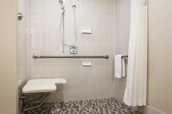 DoubleTree by Hilton Hotel Boston - Downtown: Roll-in Shower