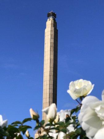 MJ Savage Memorial Park: photo9.jpg