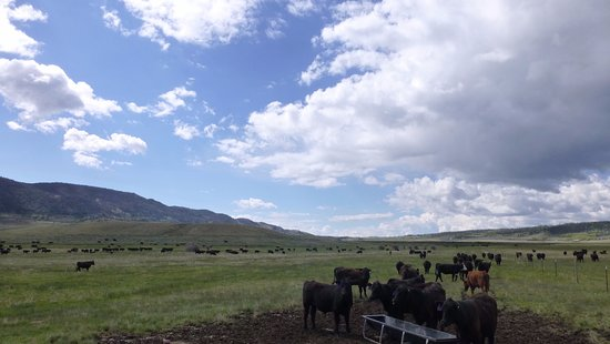 The Ranch is located in beautiful Centennial Valley near Laramie