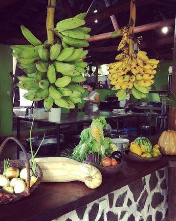 Xplore Costa Rica : photo2.jpg