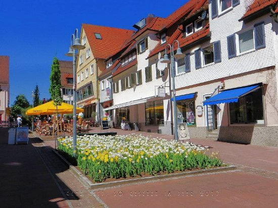 Freudenstadt, Germany: In der mittleren Bahn ein Tulpenbeet, sowie Tische und Bänke eines Gastronomiebetriebs, Sonnensc