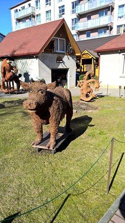 Tukums, Letonia: Ko i lite mindre än naturlig storlek