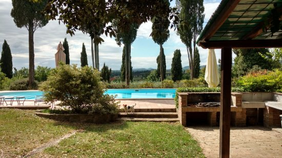 Villa il Poggio : Beautiful pool