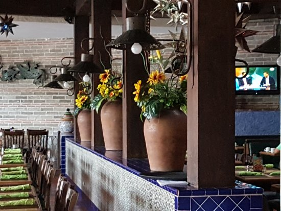 Los Cebollines: 20170601_081946_large.jpg